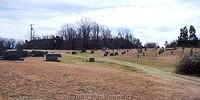 1 New Gilead Reformed Church Cemetery - 2